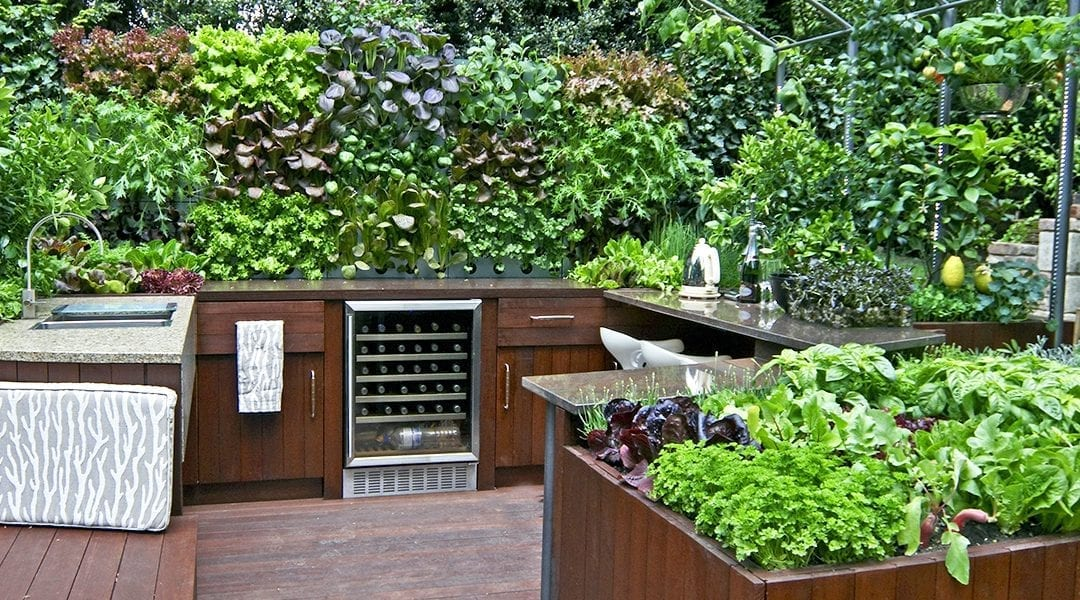 Outdoor Kitchen Edible Planters